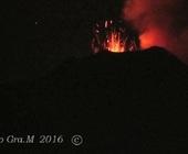 Fonte della foto: Guidone.it - Ecologia