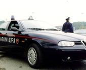 Fonte della foto: Giornale dell'Emilia Romagna
